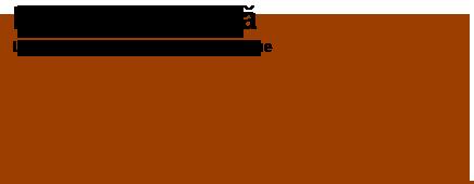 Lecții Apicultură