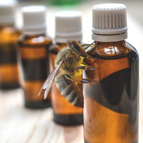 uleiuri esentiale in tratarea acarianului varroa