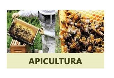 apicultura-iernare